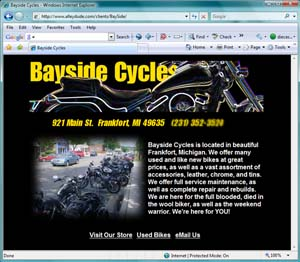 Alleydude $199 Small Business Special. Three Page Website Optimized for Search.